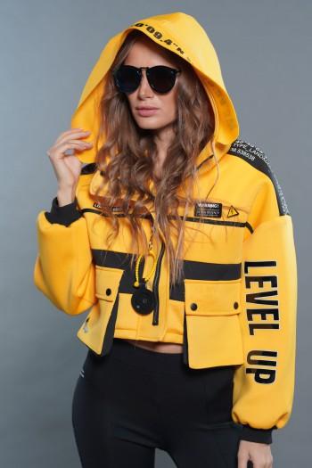 Yellow Coat LEVEL UP